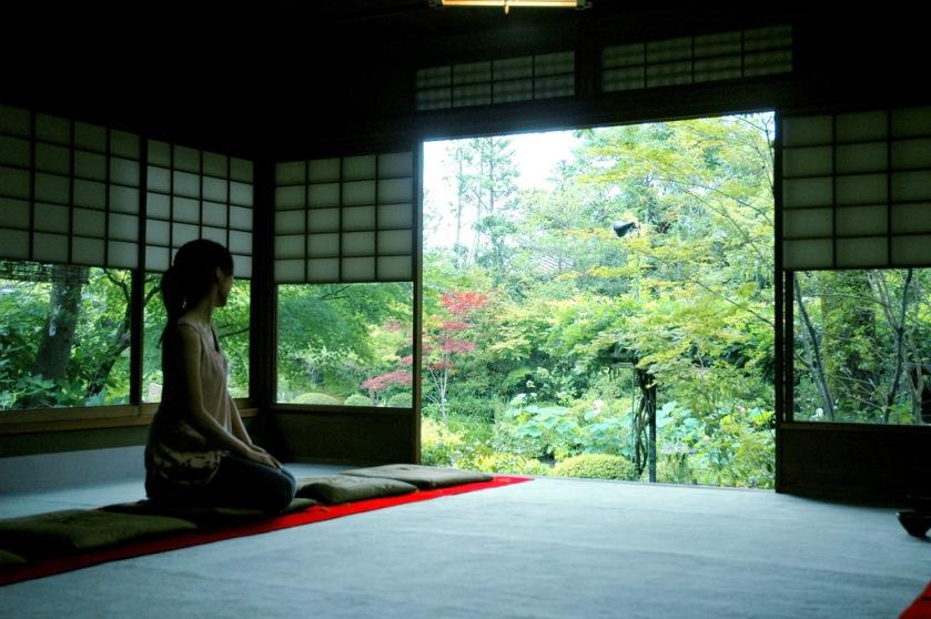 mediation forest
